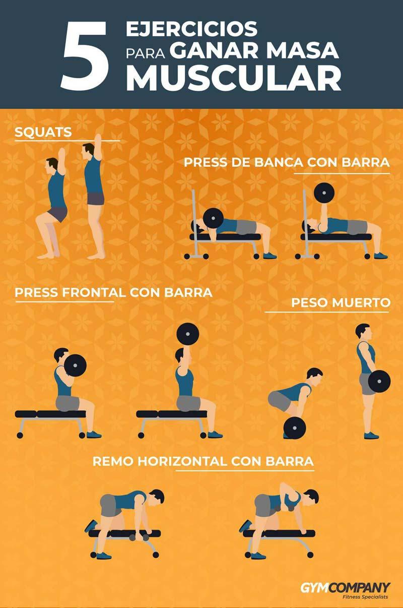ejercicios-para-ganar-masa-muscular-infografia